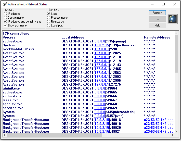 Netstat process of Active Whois for Windows